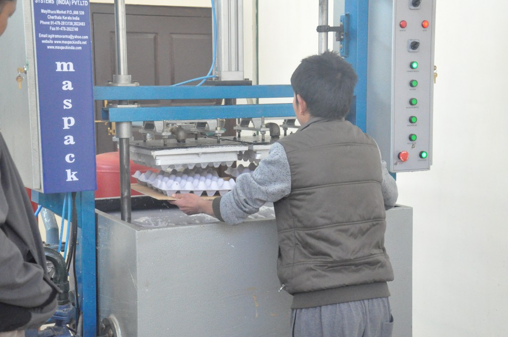 Production of egg trays at the pulp molding machine