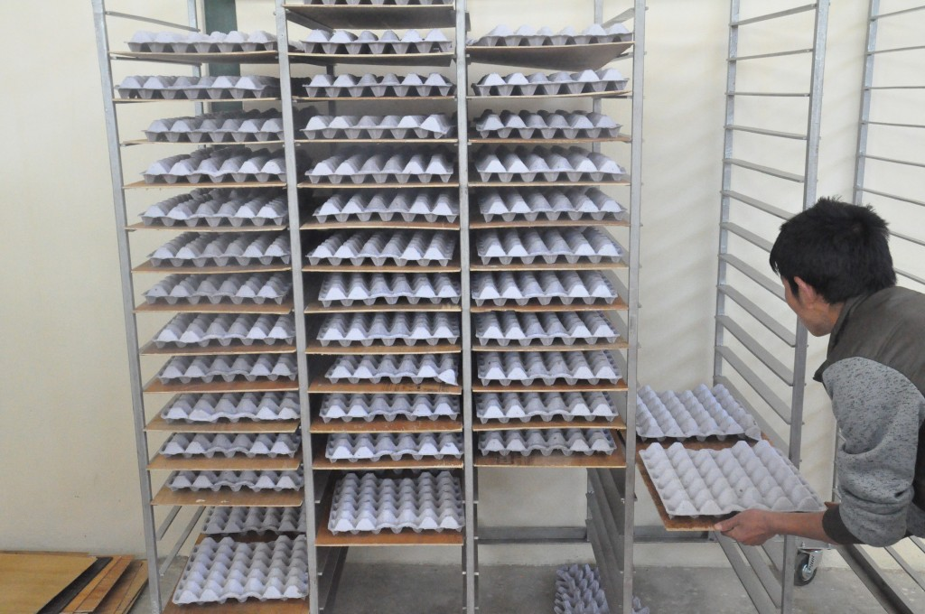 Drying of egg trays on trolleys