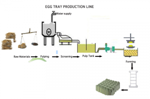 Entire process of egg tray production from waste paper